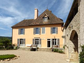 7 bedroom Chateau with Internet Access in Puligny-Montrachet - Puligny-Montrachet vacation rentals