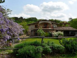 Country Chianti - San Casciano vacation rentals
