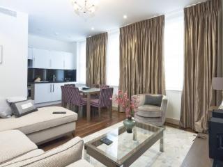 5star Luxury just around the corner to Harrods - London vacation rentals