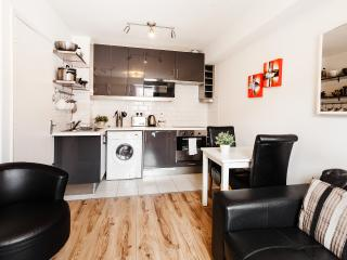 Parnell Street One Bedroom Apartment - Dublin vacation rentals