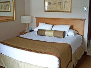 Beautiful Place in Nevada - Las Vegas - Las Vegas vacation rentals