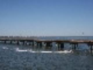 Cozy Bayfront across Bridge from St. George Island - Eastpoint vacation rentals