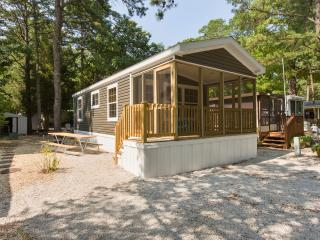 Brand New 2 Bedroom Cottage in Cape May County - Cape May Court House vacation rentals
