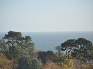 Stunning sea view in Stoke Fleming near Dartmouth - Stoke Fleming vacation rentals