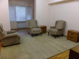 Two room apartment in Yerevan Down Town - Geghard vacation rentals