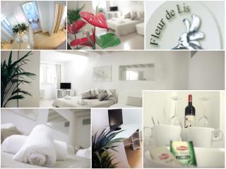 "Fleur De Lis ""accademia"" - Bergamo vacation rentals"