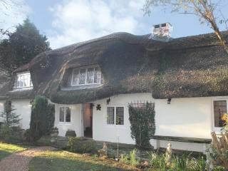 Cago Cottage - New Milton vacation rentals