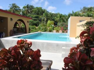 Pool Bungalow -Premier Rental With Pool Near Beach - Isla de Vieques vacation rentals