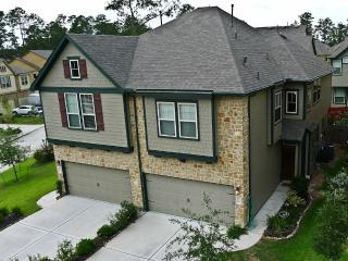 Woodlands, Texas furnished Townhome for Rental - Conroe vacation rentals
