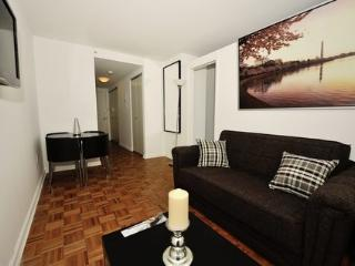 Luxury and Homy Apartment in Midtown West 6A ~ RA42946 - Long Island City vacation rentals