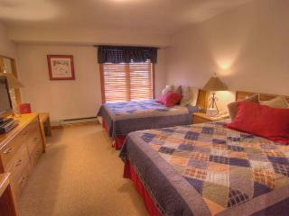 Nice Condo with Internet Access and Garage - Avon vacation rentals
