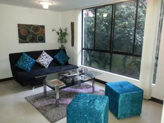 2 BEDROOM MODERN AND LUXURIOUS APARTMENT - Medellin vacation rentals