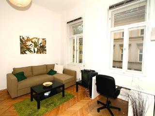 Apartment Mariahilferstrasse ~ RA6932 - Vienna City Center vacation rentals