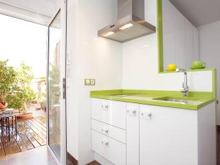Watermelon Barcelona Penthouse - Barcelona vacation rentals