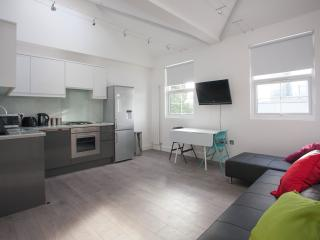 Lovely Bright Flat Euston Sleeps 4 - London vacation rentals