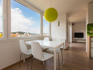 THE VIEW APARTMENT, GARAGE, AIRCON - Ljubljana vacation rentals