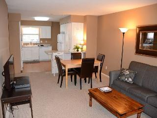 Premier Location! Near Mayo, St. Mary's and Apache Mall! Free WiFi.. 5 Stars! - Rochester vacation rentals