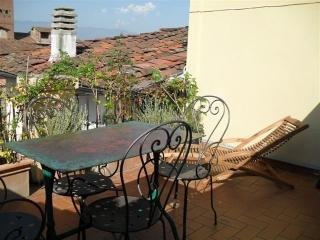 classy and cozy over Lucca;s roof - Lucca vacation rentals