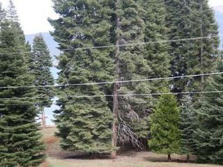 Country Club Cabin with a Peek of the Lake! - Lake Almanor vacation rentals