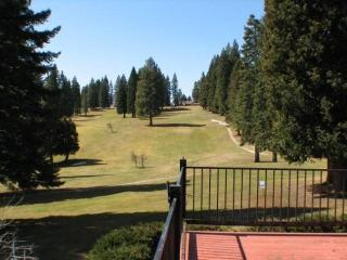 Country Club Golf Course Home near Rec Area 1 - Lake Almanor vacation rentals