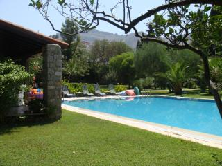 Rosea House, spacious property with private pool - Turgutreis vacation rentals