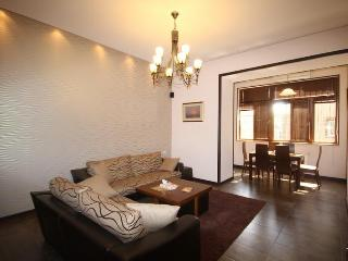 Yerevan Deluxe Two-Bedroom Apartment - Yerevan vacation rentals