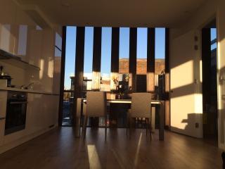 Brand new stylish one bedroom flat - London vacation rentals
