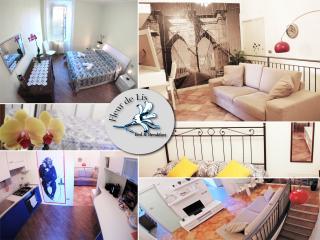 """Fleur De LIs """"PLaza"""" - Bergamo vacation rentals"""
