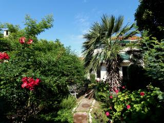 Palm Tree Apartment - Lopud vacation rentals