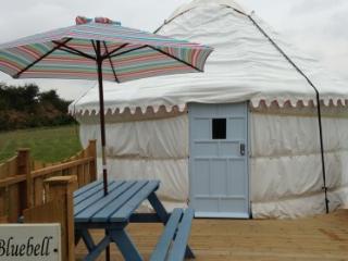 Bluebell Yurt - Goonhavern vacation rentals