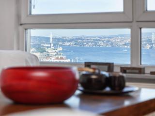 CIHANGIR | stunning Bosphorus view! - Istanbul vacation rentals