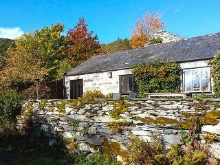 BENAR, ground floor pet-friendly cottage by stream, wonderful views, good walking, Penmachno, Ref 918080 - Penmachno vacation rentals
