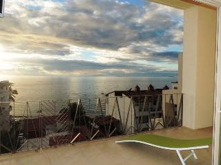 V177 Beautiful 1BR Brand New Condo in RomanticZone - Puerto Vallarta vacation rentals