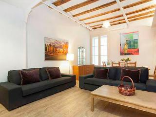 LUXURY BORN, DOWNTOWN, up to 10! - Barcelona vacation rentals
