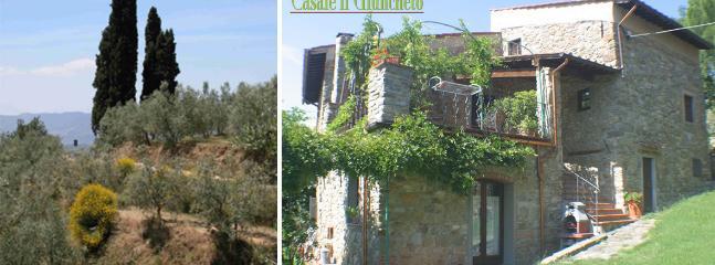 Spacious 4 bedroom Castelfranco di Sopra Villa with Internet Access - Castelfranco di Sopra vacation rentals