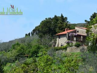 Casale il Giuncheto - Castelfranco di Sopra vacation rentals