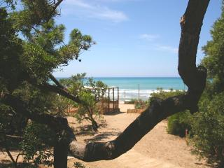 IL DELFINETTO Appartamento  A6 - San Vincenzo vacation rentals