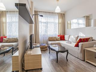 Bright and Stylish Flat / 2BR 709 - Istanbul vacation rentals