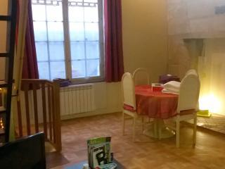 SEJOUR MEDIEVAL CENTRE VILLE - Tours vacation rentals