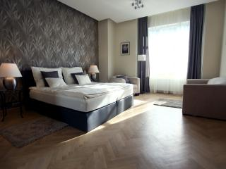 Splendor Above the City - Budapest vacation rentals
