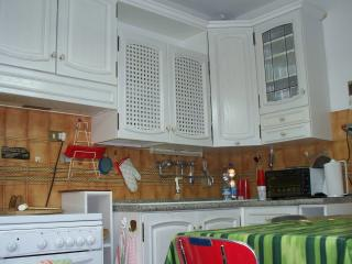 Convenient countryside apt,23km from Siena - Monteroni d'Arbia vacation rentals