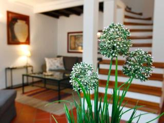 Luxury Orbitelli - Rome vacation rentals
