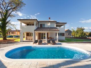 Villa Guida - Nedescina vacation rentals