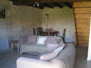 Cassiopeia 3 b'room gite on family friendly comple - Villeneuve la Comtesse vacation rentals
