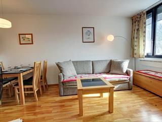 Chamois Blanc 421 - Chamonix vacation rentals