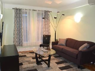 Beautiful One Bedroom in Park Slope!!! - Brooklyn vacation rentals