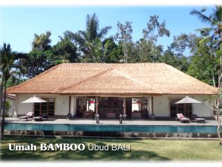 Umah BAMBOO ...... a new paradise near UBUD. - Tegalalang vacation rentals