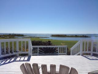 The Best View on the Bay! - Reedville vacation rentals