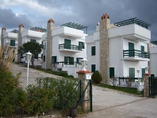 Comfortable Villa with Internet Access and A/C - Cesme vacation rentals