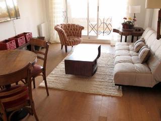 Guatemala and Darregueyra I - Buenos Aires vacation rentals